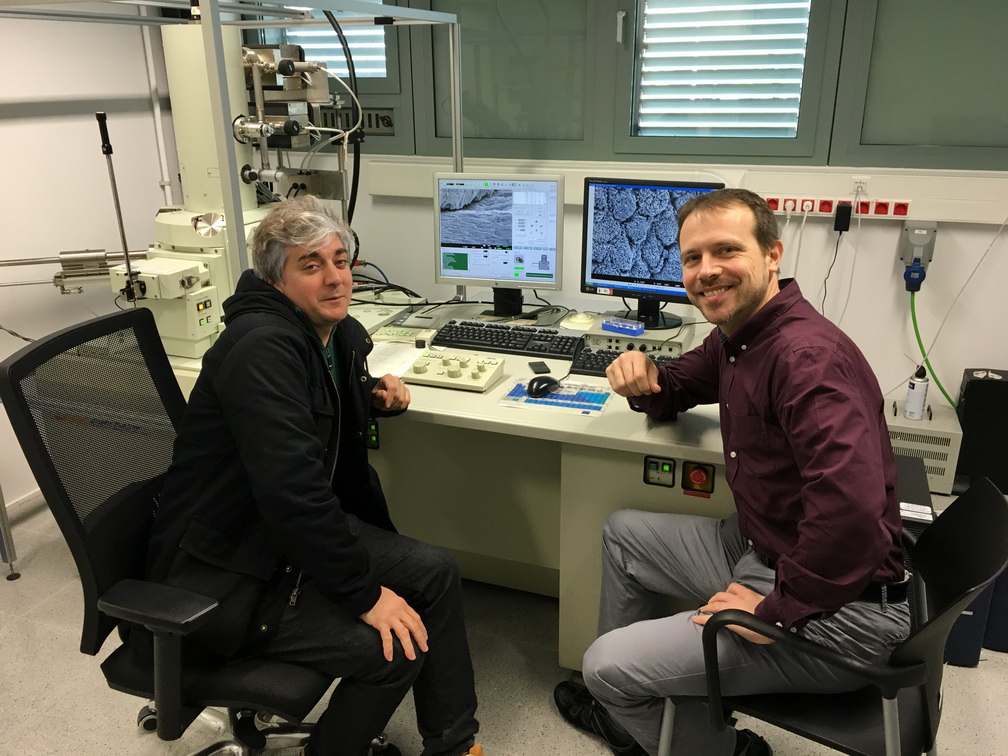 Studies with high-definition electron microscopy at the Polytechnic University of Catalonia